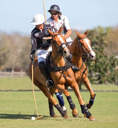 Vero Beach Polo Hosts second round of Sportsmanship Cup